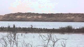 قناة السويس الجديدة :أول فيديو حصرى للقناتين الجديدة والحالية وسفينة عابرة