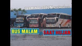Hunting Bus Kehujanan di Terminal Seruni Kota cilegon