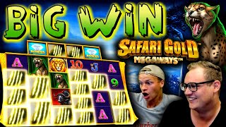 BIG WIN on Safari Gold Megaways!
