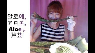 1일 섭취 권장량 : 잎의 3/1 먹어봤어요 콧물 느낌맞구여 ㅎ 맛있게먹는...