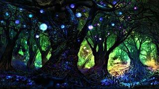 Spooky Music & Magical Music 🦇