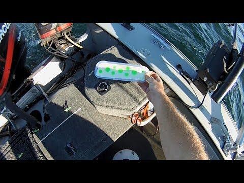 NFN's - Big Johnson Blades From Big Weenie Brand New Salmon Flasher Paddle Downrigger Camera View