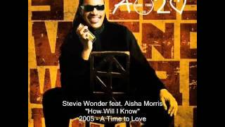 Watch Stevie Wonder How Will I Know video
