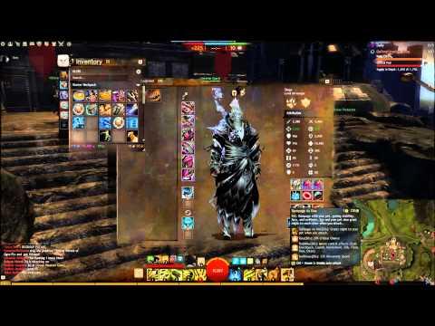 Guild Wars  Hunter Build Wvw
