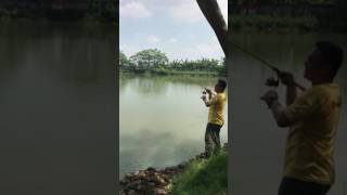 Tenryu RayZ 56L - Amazing daniel