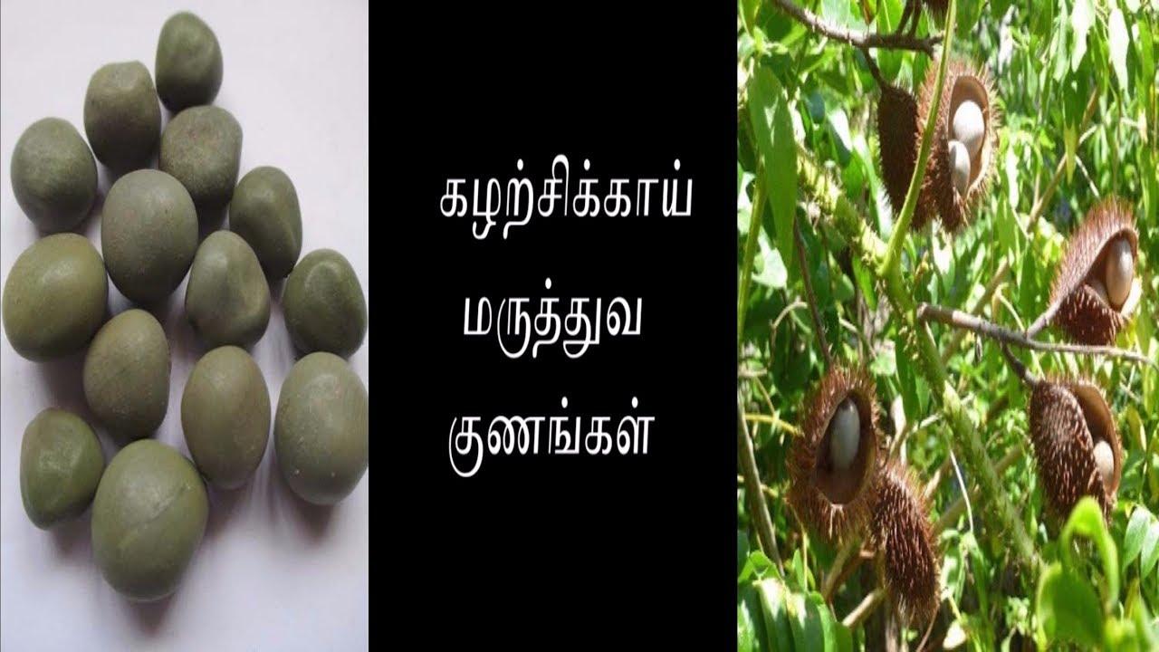 Image result for கழற்ச்சி