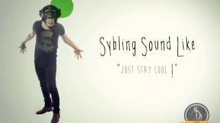 Sybling sound Like - Flume