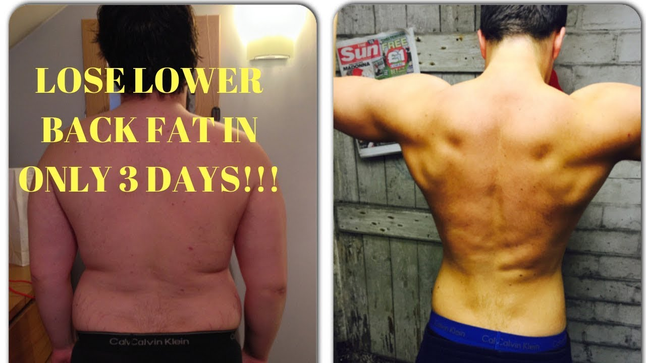 How To Lose Lower Back Fat In 3 Days Lower Back And Love Handles Exercises Youtube