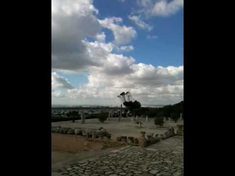 Byrsa Hill (Carthage 迦太基遺址) 突尼西亞