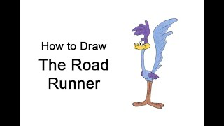 How to Draw the Road Runner (Looney Tunes)