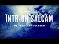 Download Fratii Radulescu - M-am născut într-un salcâm