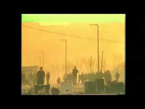 1981  Bobby Sands dies in prison