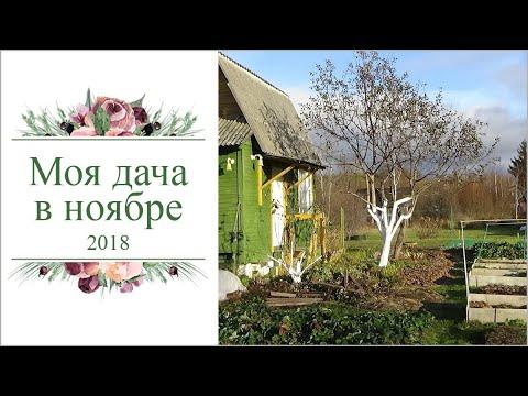 Моя дача в Ноябре 2018. Кострома.