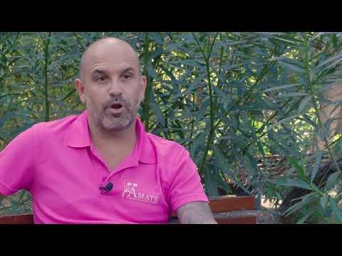 Entrevista A Carlos Vázquez (ÁMATE Tenerife)