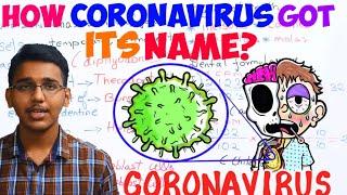 How coronavirus got its name?/How COVID-19 got its name?