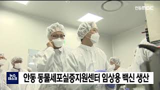 안동 동물세포실증센터 임상용 백신 생산 / 안동MBC