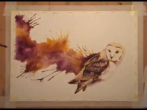 Speed Painting Watercolour Barn Owl Youtube