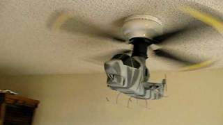 Cobra Helicopter Ceiling Fan