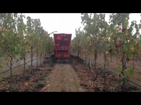 Whatcom Spreader- St. Helena Agricultural Services