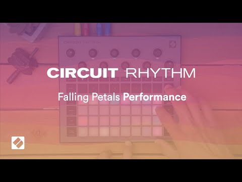 Circuit Rhythm - Falling Petals Performance // Novation