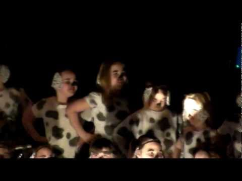 101 Dalmatians The Musical part 1 of 5