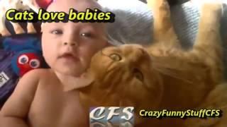 Приколы дети и животные вместе Смешно Юмор 0215 Мило Красиво До Слез