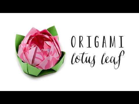 Origami Lotus Leaf ❀ Rest Flowers On Top - Paper Kawaii