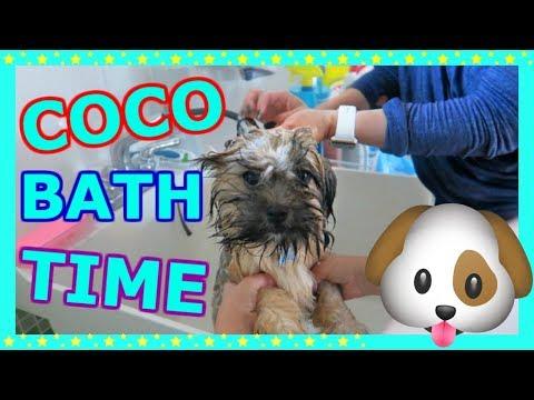 GIVING OUR DOG 'COCO' A BATH 🐶🙈🛁#105