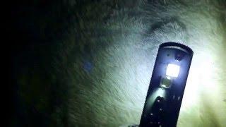 Светодиодные лампы H4 3600lm(, 2016-05-24T07:55:34.000Z)