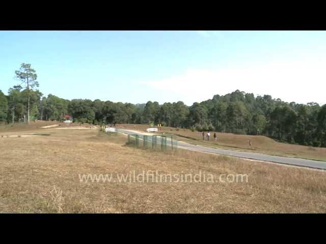 Army Golf Course, Ranikhet