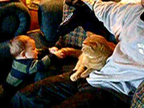 Cat hits baby!