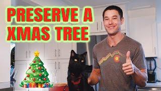 PRESERVE A CHRISTMAS TREE!