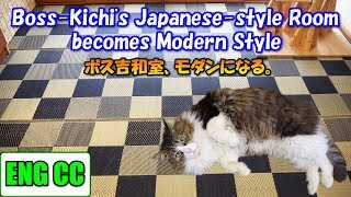 Cat's Japanesestyle room became modern by laying a goza mat.【Eng CC】