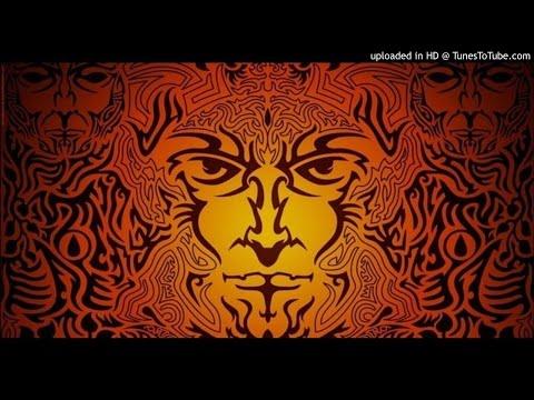 Vini Vici - The Tribe (Rokka Animal...