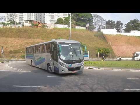 Grandino Transportes