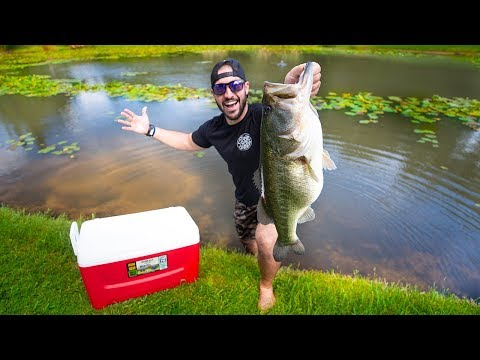 New 10 Pound PET Bass In Backyard POND!!! (Feeding Giant Bass)