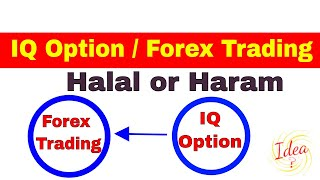 IQ Option or Forex Trading Halal ya Haram Complete Information - Idea What