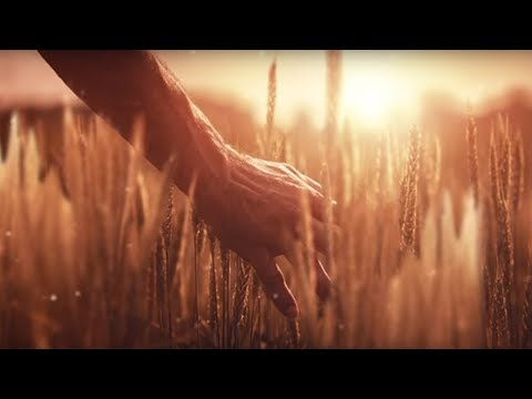 AGCO - Your Agriculture Company