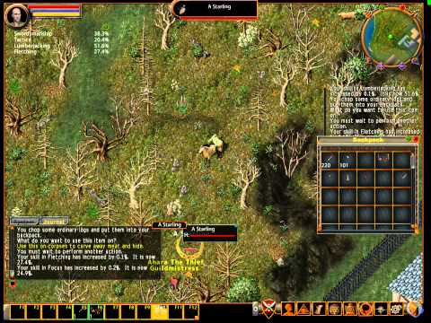Ultima Online new player gold guide