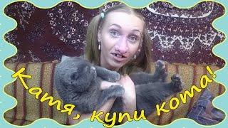 """Как продать кота быстро / Катя, купи кота! //""""КатинаВася"""" № 30. Вежно ТВ//"""