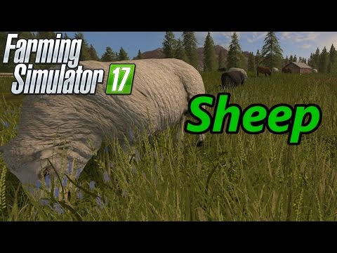 Farming Simulator 17 Tutorial | Sheep