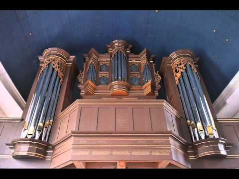 Arp Schnitger Orgel Hollern - Prof. Harald Vogel stellt die Orgel vor