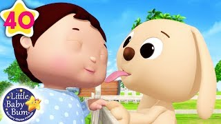 Cute Animals Song | Cute Animals Song for Kids + More Nursery Rhymes & Kids Songs | Little Baby Bum