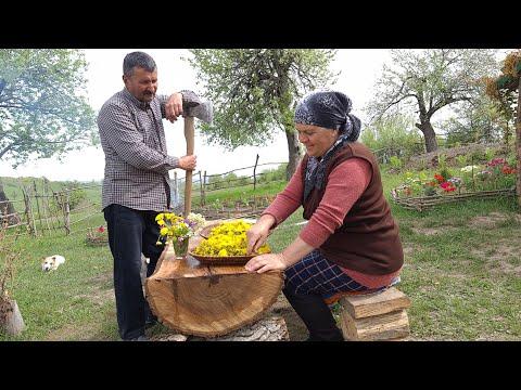 Making Natural Dandelion Flower Jam and Delicious Chicken Dish, Zəncirotu Mürəbbəsi Hazırladıq