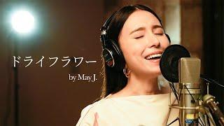 今日は、優里さんの「ドライフラワー」を歌ってみました。 以前のカラオケとはちょっと違う、スタジオでの歌ってみた企画に挑戦しています。 はしもっちゃんねるでは、これまで ...