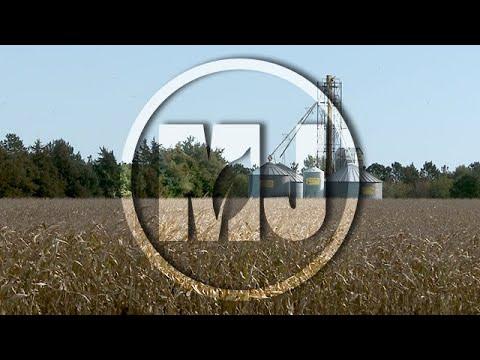 Grain Storage (Part 1) - Kenneth Hellevang - October 12, 2018