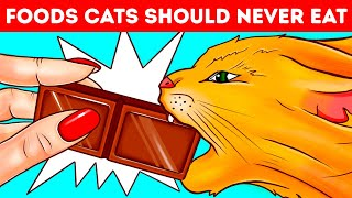 Why Cats and Dogs Can't Eat Chocolate or Other Foods