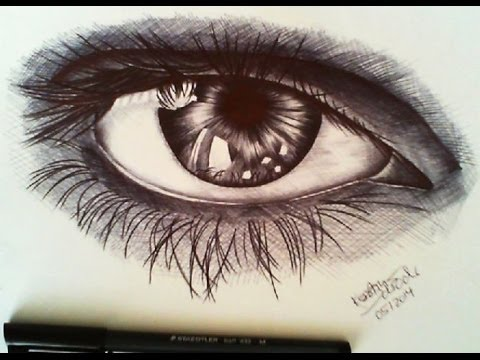 Ballpoint Pen Eye Drawing Speed Drawing Eye Ballpoint