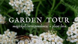 Garden Tour || magickal correspondences + plant love