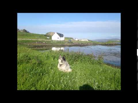 Ò Fhluir na h-Albann O Flower of Scotland sung by Fiona J Mackenzie